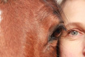 A Horse and Woman's Face Next to Each Other
